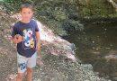 Hiking Fruška Gora, Lazin vir I deo