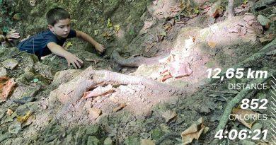 hiking fruska gora Brvnare od Milice